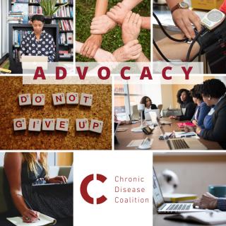 Ambassador_Graphic_Western_Region_advocacy